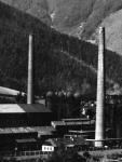 Bildausschnitt, ca. 1937
